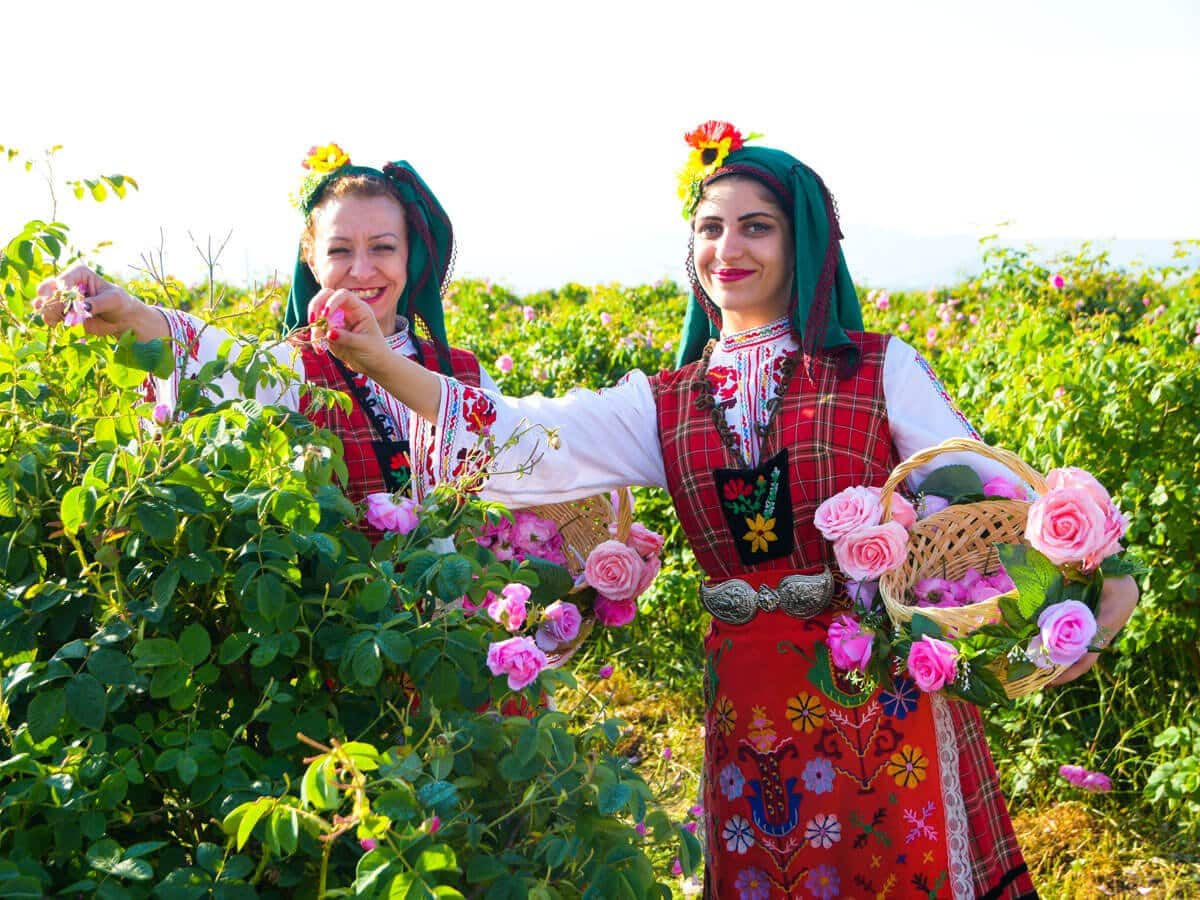30th May 2020/Day 3: Enjoy the uniqueness of the Bulgarian Rose Festival in Karlovo